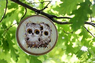 Маленькие совята - Риолис