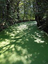 Водный путь