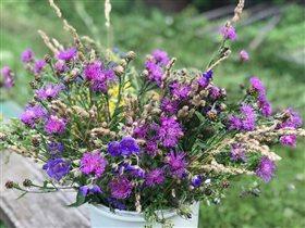 Летние цветы- такие ароматные и нежные