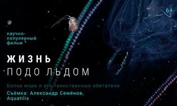 Медитативный биологический триллер «Жизнь подо льдом», снятый на ББС МГУ