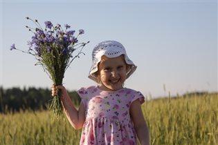 Пшенично-васильковое лето