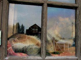Окно под охраной