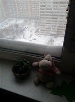 Погода в доме