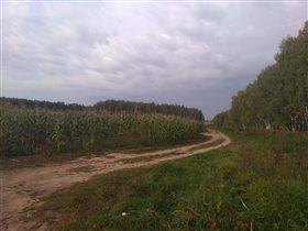 Дорога в тучу