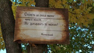 Мудрые мысли))
