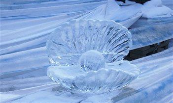 Ледяная ракушка