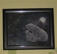 Панна  полярная ночь  Ж-0344