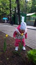 Красочная весна))