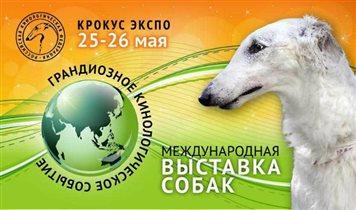 Выставка собак 'Мемориал А.П. Мазовера 2019'