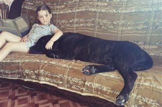 Маша и ее любимый кане-корсо Ричард