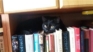 что вы так смотрите? Да я буду читать.