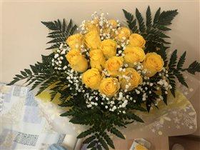 Желтые розы на снегу