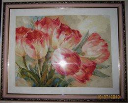 Тюльпаны от Алисы