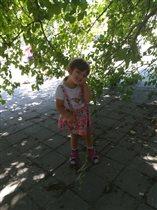 Нашли отличное укрытие от жаркого крымского солнца