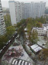 08 мая 2017 года Москва, и зима ведь была снежная