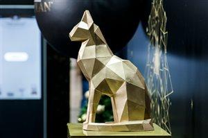 """Конкурс красоты среди пушистых: онлайн - выставка кошек """"Winter Cat Show 2020"""""""