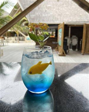 Мальдивы: забавный напиток с золотой рыбкой для детей и шоколадный час для всех