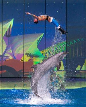 Москвариум на ВДНХ: грандиозное шоу «Вокруг света за Новый год»