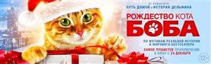 «Уличный кот по кличке Боб» - выходит на экраны!