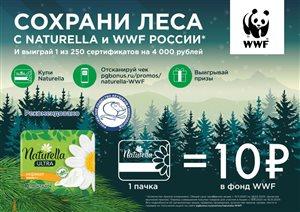 Сохрани леса Красноярского края вместе с Naturella