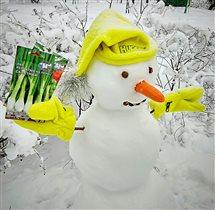 Снеговик садовод