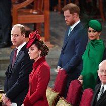 Принц Уильям принц Гарри последние новости