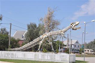 Привет от динозавра