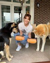 Екатерина Волкова приютила слепую собаку - и отметила день рождения сразу 3 питомцев тортиками