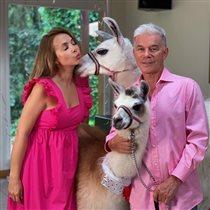 Розовая свадьба Олега и Марины Газмановых: 'Наряжаемся фламинго и празднуем с детьми'