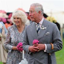 Жена принца Чарльза Камилла: ТОП-5 любимых книг для отпуска